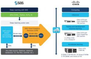Cisco and SAS platform architecture