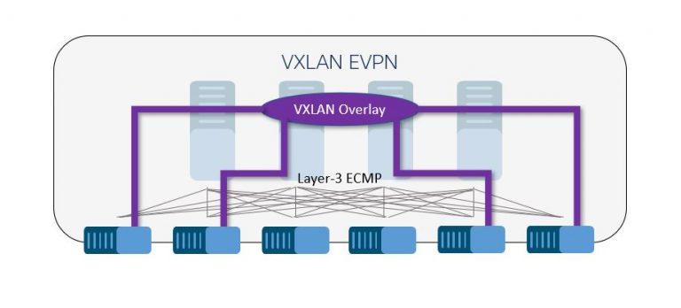 A loop-free VXLAN overlay network.