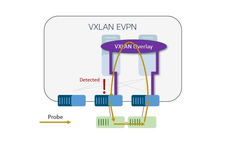 A probe uncovers a loop in a southbound Ethernet network.