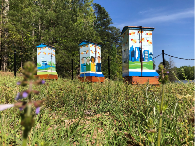 Cisco beehives in RTP painted in bright colors
