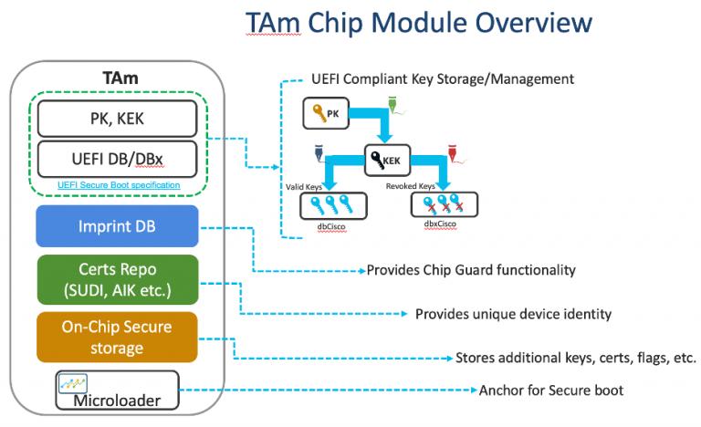 TAM Chip Module
