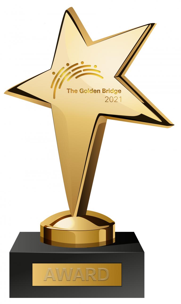 Cisco Networking Academy graphic of bridge award