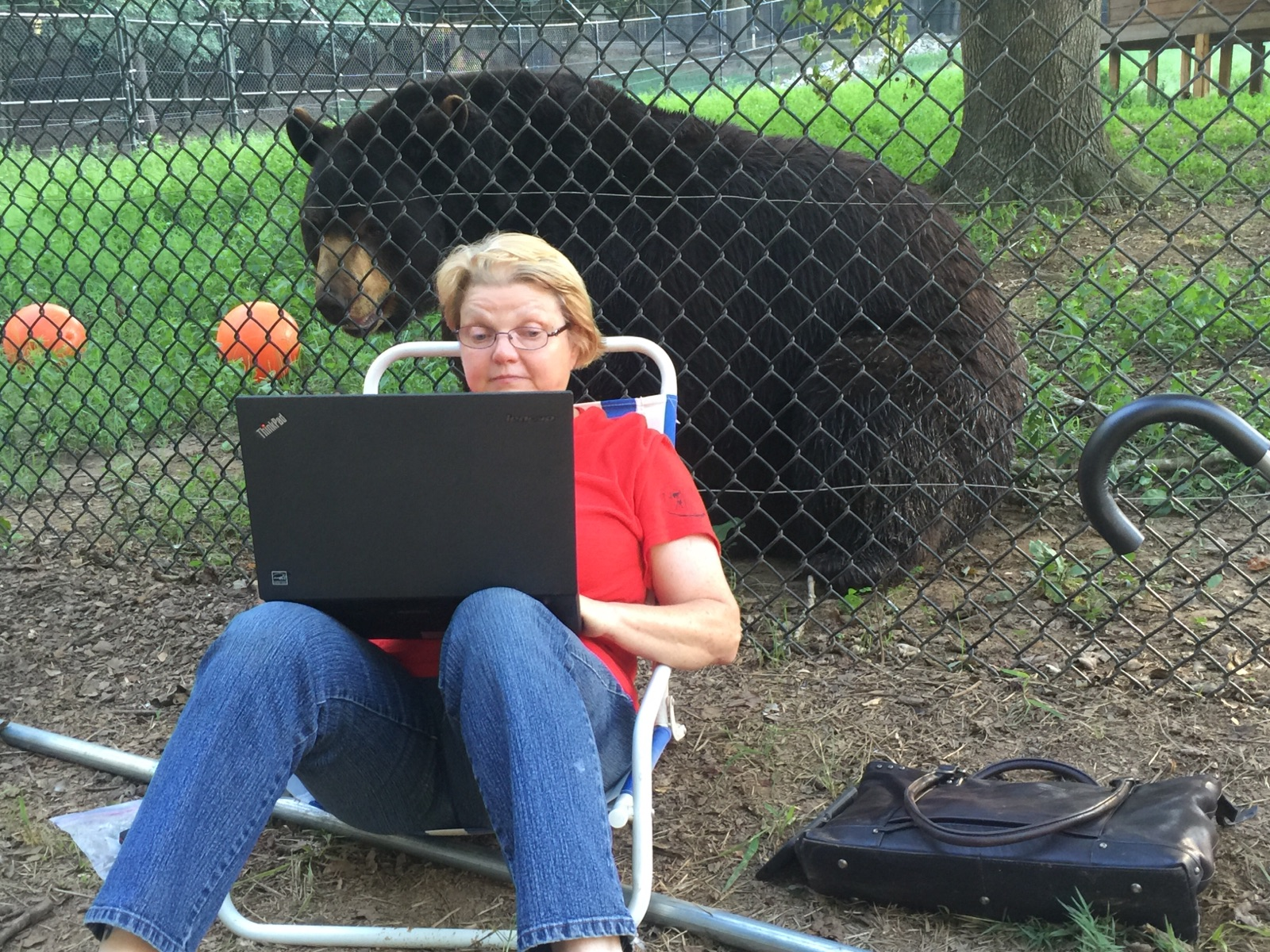 Rit's daughter's PenPal sitting in front of a bear, while working on a laptop.