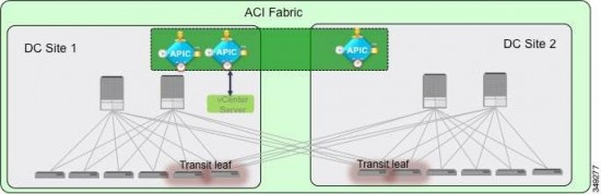 ACI Stretched Fabric Topology