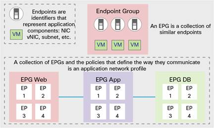 Endpoint Group Policy