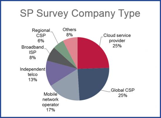 Service Provider Type - Survey Demographics