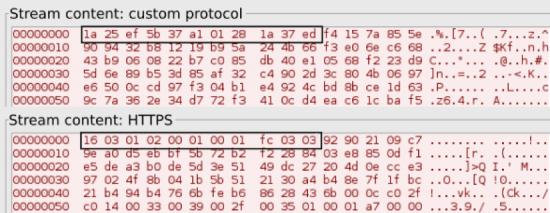 SSL vs custom protocol headers