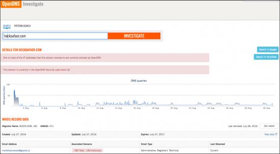Figure 18.0: Domain search in OpenDNS Investigate