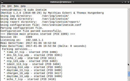 Figure 3. Screenshot of INetSim executing.
