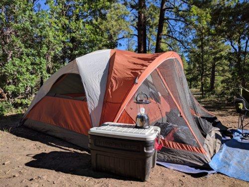 & Coleman Evanston 4 Tent Review