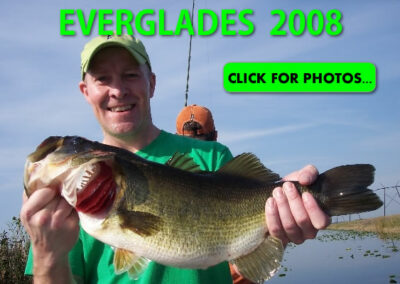 2008 Florida Everglades Pictures
