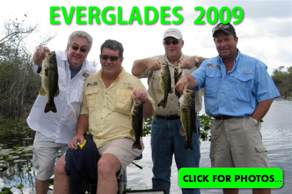 2009 Florida Everglades Pictures