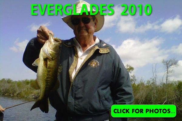 2010 Florida Everglades Pictures