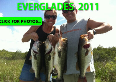 2011 Florida Everglades Pictures