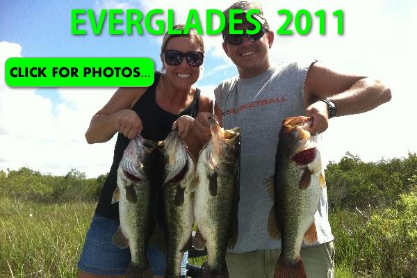 2011 Florida Everglades Pictures