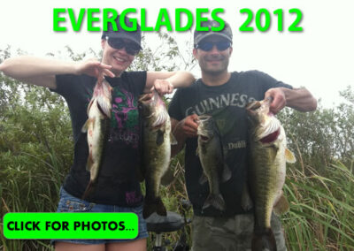 2012 Florida Everglades Pictures