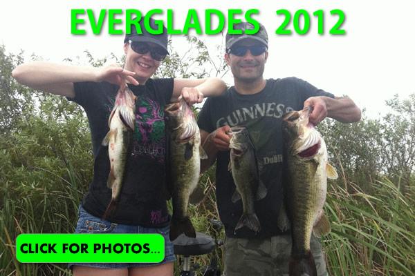 2012 Florida Everglades Pictures