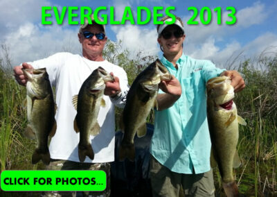 2013 Florida Everglades Pictures