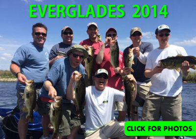 2014 Florida Everglades Pictures