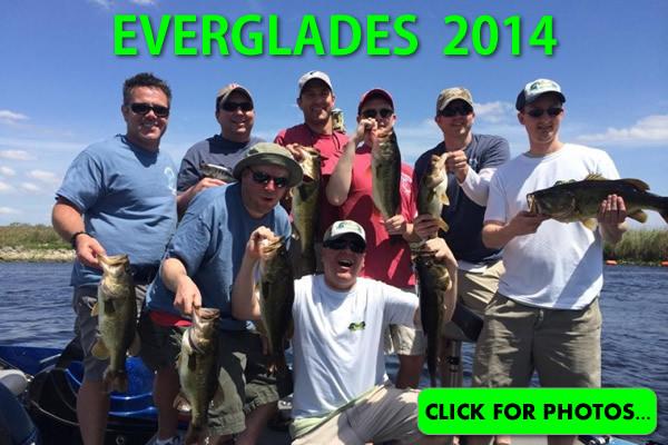 2014 Florida Everglades Pictures