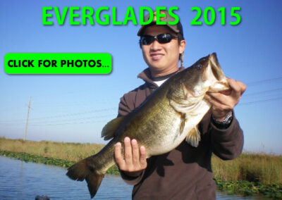 2015 Florida Everglades Pictures