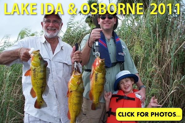 2011 Lake Ida Peacock Bass Pictures