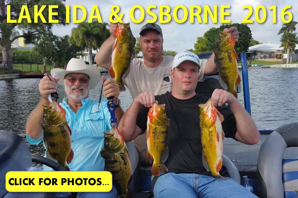 2016 Lake Ida Peacock Bass Pictures