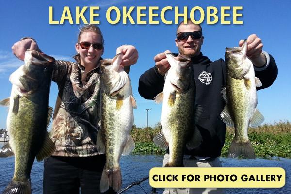 Okeechobee Gallery