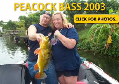 2003 Peacock Bass Pictures