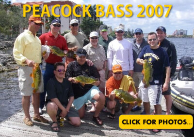 2007 Peacock Bass Pictures
