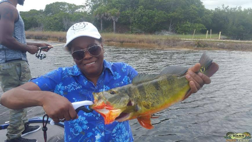 Peacock Bass Fishing In The AeroJet Canal