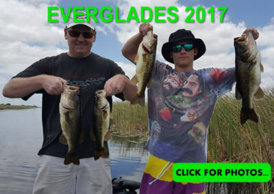2017 Florida Everglades Pictures