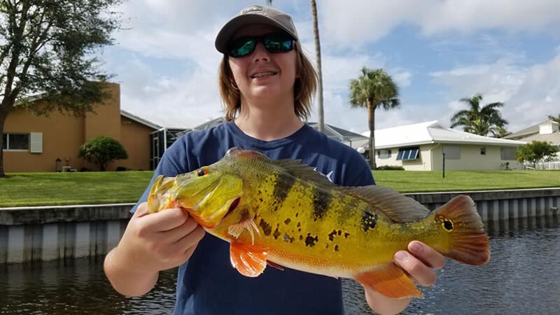 Great Peacock Bass Fishing Trip