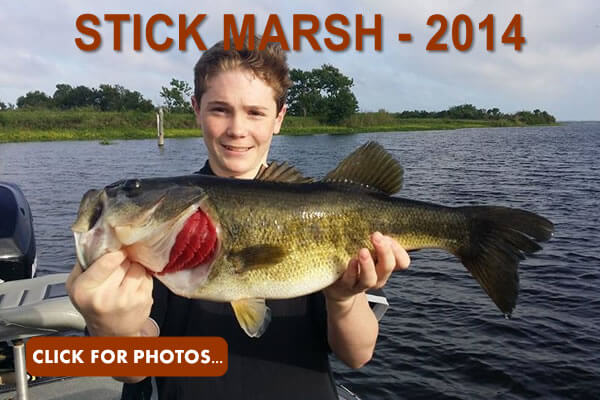 2014 Stick Marsh Pictures