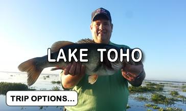 Lake Toho Bass Fishing Trips