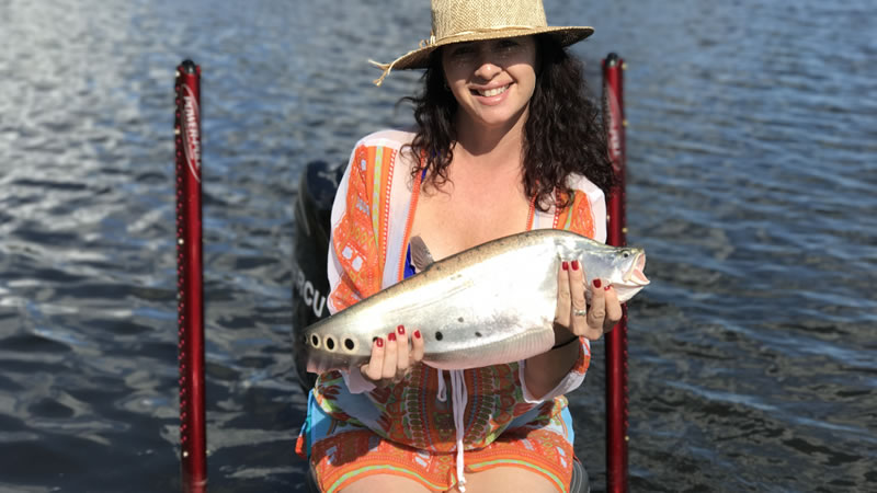 Florida Dream Clown Knifefish Fishing in Palm Beach County