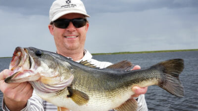 big bait fish to catch bass - big bass baits