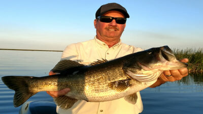 steady retrieve for big fish fishing