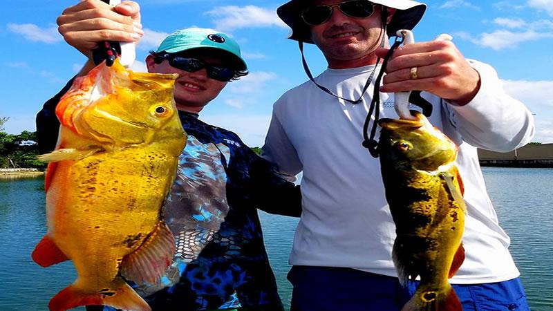 Urban Miami Peacock Bass Fishing 2