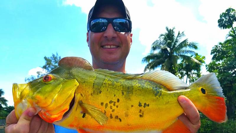 Backwater Canal Bass Fishing 1