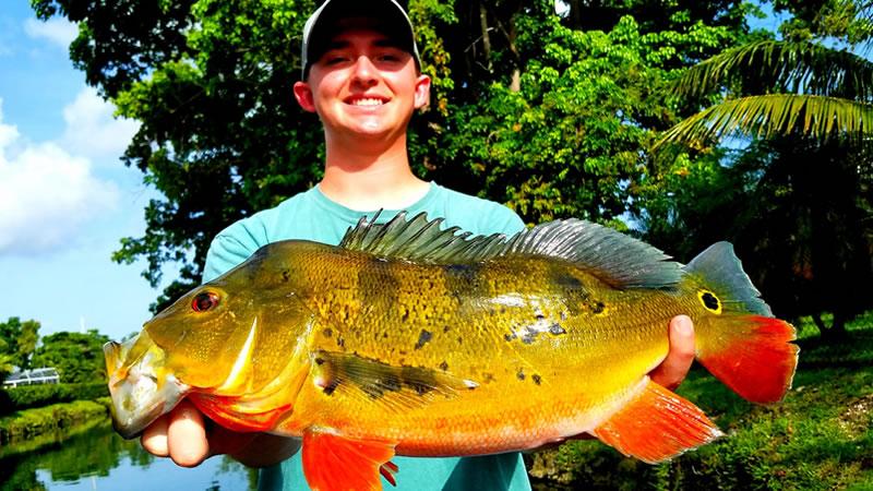 Falls Canal Bass Fishing