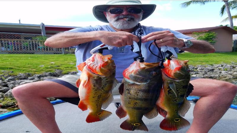 miami travelers bass fishing 4