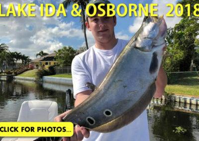 2018 Lake Ida Peacock Bass Pictures