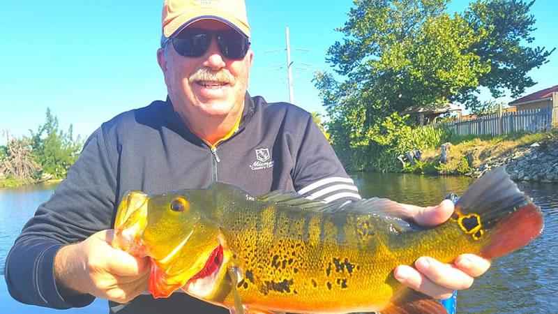 February Peacock Bass Fishing 2
