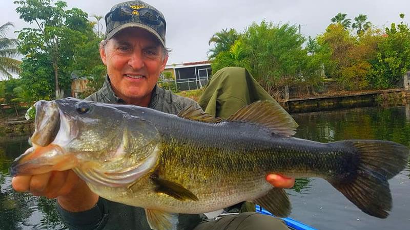 Peacock Bass Spawn Fishing 3