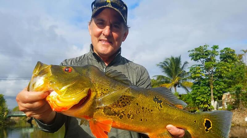 Peacock Bass Spawn Fishing 4