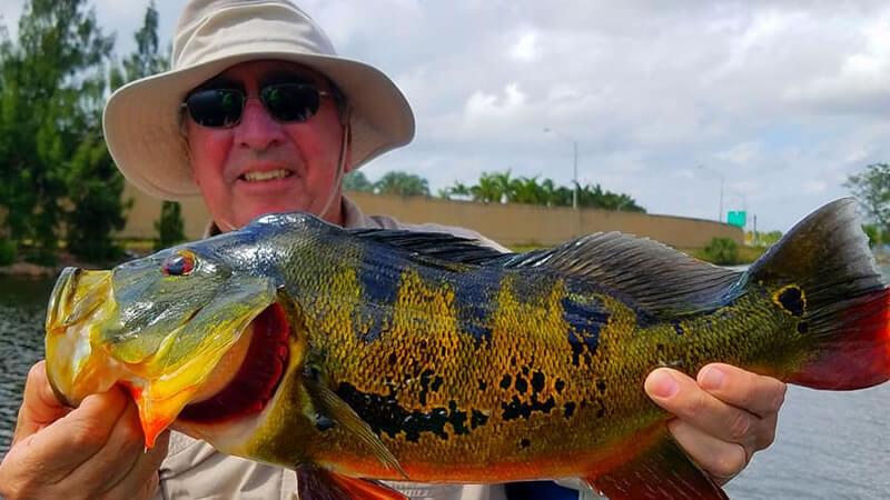 Home Builders Bass Fishing 2