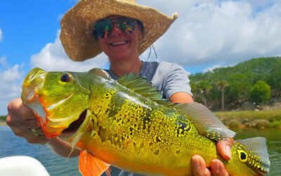 Deep South Peacock Bass Fishing Charters in Miami, FL