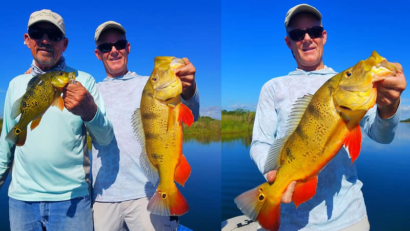 Family Vacation Exotic Fishing for Miami Peacock Bass in Florida