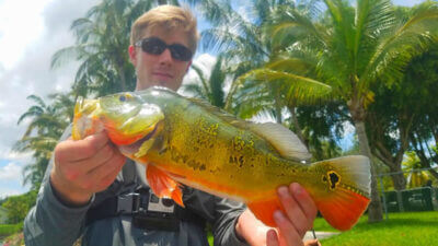 Go Pro Bass Fishing 2